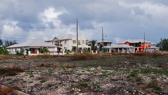 CoralHaven